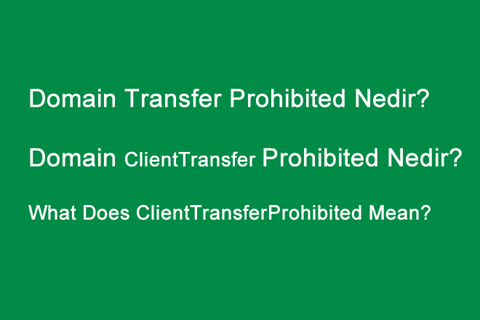 Domain Transfer Prohibited Nedir?