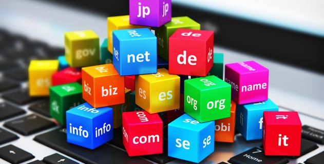 Domain Bilginizi Ölçün!