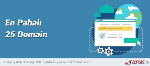 En Pahalı 25 Domain