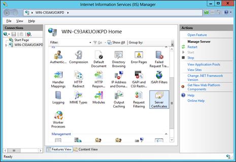 Microsoft IIS 8.x  CSR Kodu Oluşturma