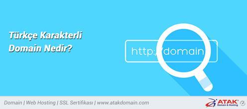 Türkçe Karakterli Domain Nedir?