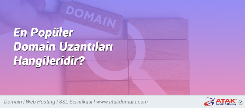 En Popüler Domain Uzantıları Hangileridir?