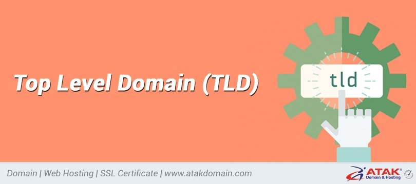 What is the meaning of TLD? Key points about gTLD