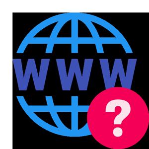 .monster uzantılı domain whois bilgisine nasıl bakabilirim?